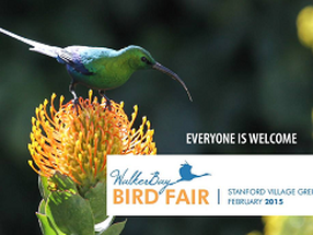 Stanford Bird Festival, near Hermanus
