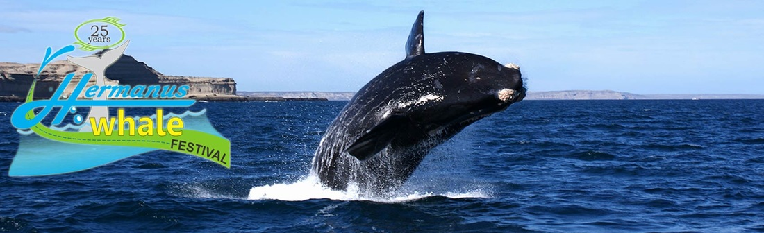 Hermanus Whale Festival - 28th and 30th Sept, 2018
