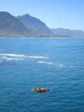 Sea Kayaking with the Whales Hermanus