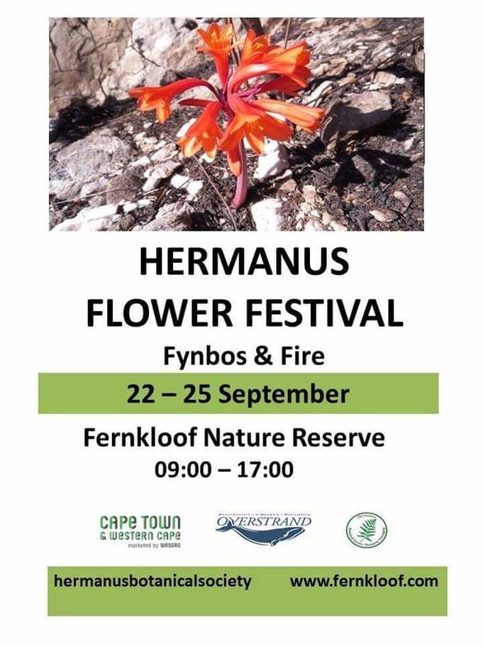 Hermanus Flower festival at Fernkloof 22nd to 25th Sept 2016